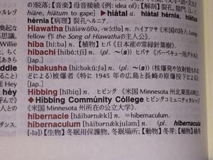 Hibakusha_3